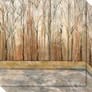 Canvas Art Gallery Wrap 'Telluride II (Forest)' by Jack Roth 20 x 20-inch