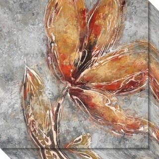 Canvas Art Gallery Wrap 'Ashanti II (Floral)' by Adam Rogers 20 x 20-inch