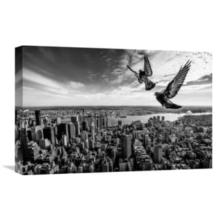 Global Gallery Sergiosousa 'Pigeons On The Empire State Building' Stretched Canvas Artwork