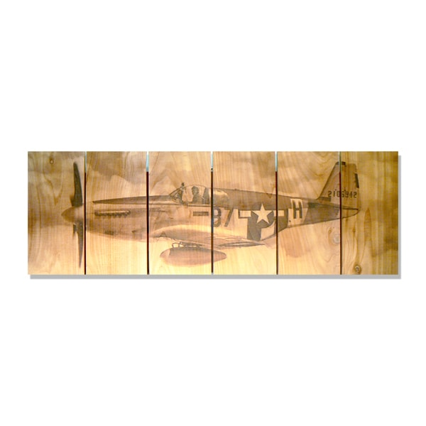 Past Flight 32x11 Indoor/Outdoor Full Color Cedar Wall Art