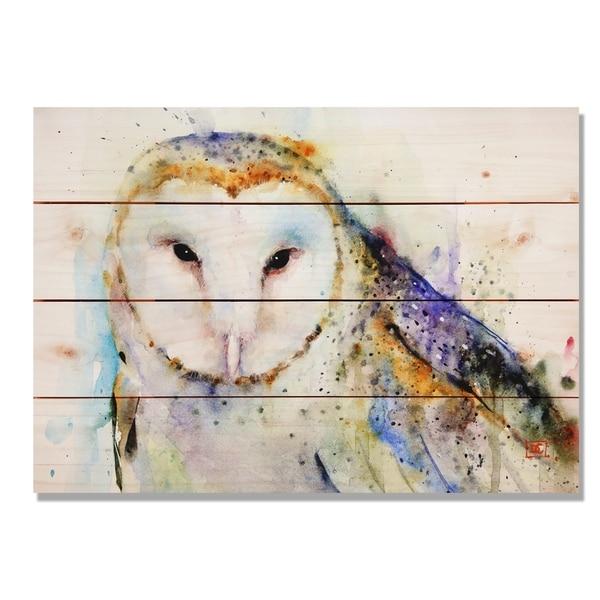 Barn Owl 20x14 Indoor/Outdoor Full Color Wall Art