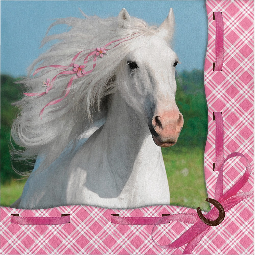 Creative Converting Heart My Horse Lunch Napkins (Case of...