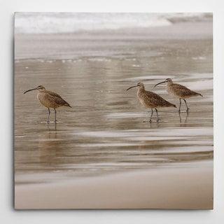 Wexford Home 'Shore Birds I' Canvas Wall Art