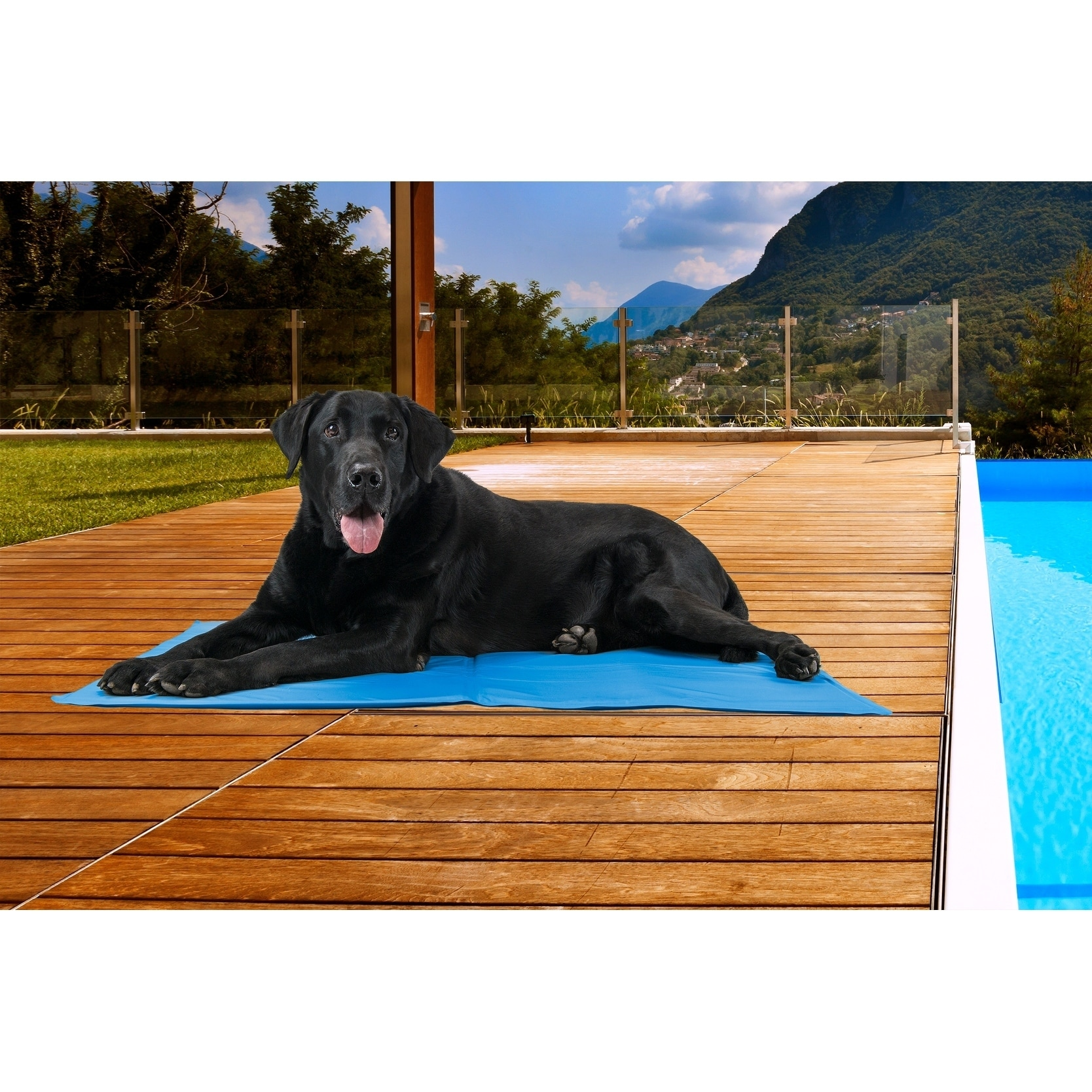 FurHaven Pupicicle Cooling Gel Mat (Gray, Jumbo), Grey, S...