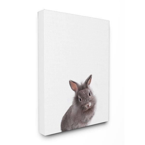 Baby Bunny\' Studio Photo Stretched Canvas Wall Art - Free Shipping ...