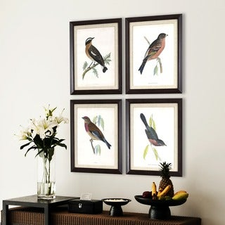 Set of 4 Antique Bird Studies in Dark Woodgrain Finish Frame