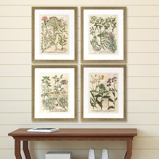 Set of 4 Garden Flowers in Distressed Silver Finish Frame