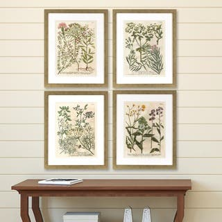 Set of 4 Garden Flowers in Distressed Silver Finish Frame|https://ak1.ostkcdn.com/images/products/14291300/P20875095.jpg?impolicy=medium