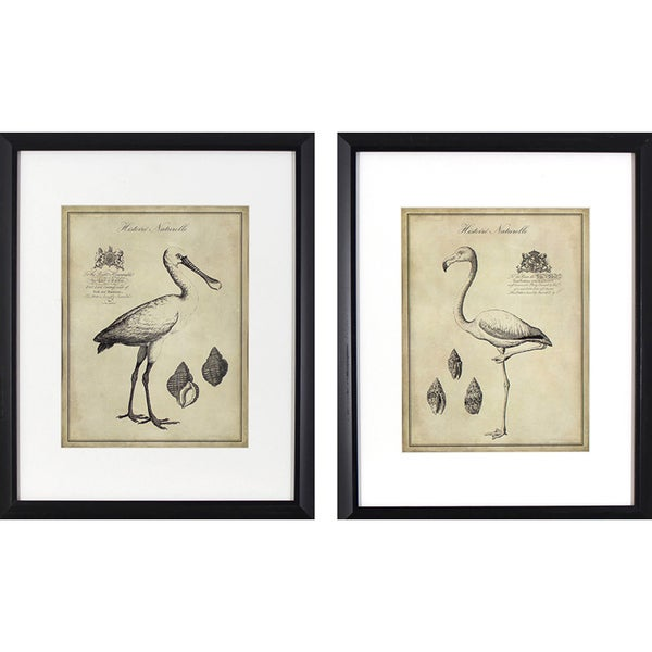 Set of 2 Antique Flamingoes in Black Finish Frame