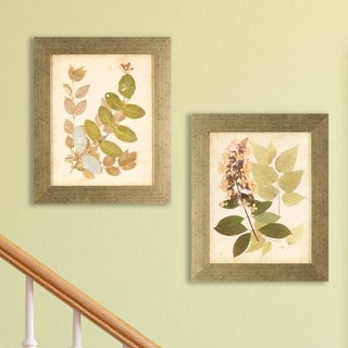 Set of 2 Nature's Collage in Distressed Silver Finish Frame