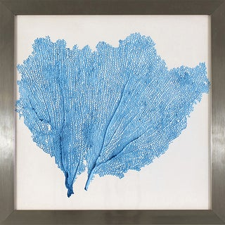 Blue Sea Fan Study in Stainless Steel Finish Frame