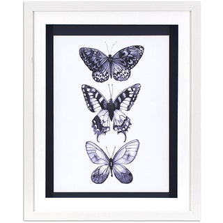 Monochrome Butterflies in White Finish Frame