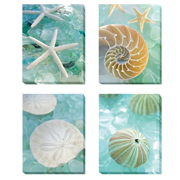 Seaglass I thru IV by Alan Blaustein 4-pc Gallery-Wrapped Canvas Giclee Set