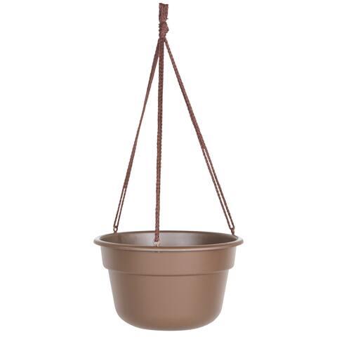 Bloem Dura Cotta 10-inch Chocolate Hanging Basket