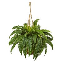 Nearly Natural Boston Fern 33-inch High Hanging Basket