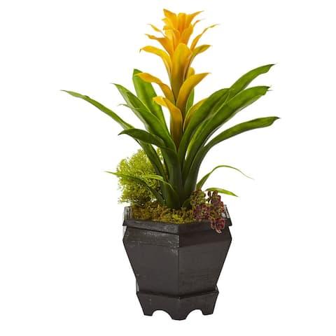 Bromeliad in Black Hexagon Planter (Yellow)