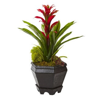 Nearly Natural 16.5-inch Red Bromeliad in Black Hexagonal Planter