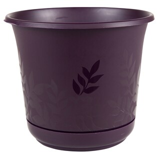 Bloem Freesia 6-inch Exotica Planter with Saucer