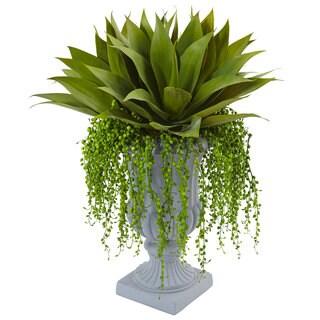 Nearly Natural Agave and Senecio Succulent Arrangement