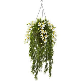 Bamboo and Dendrobium Cream Hanging Basket