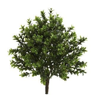Indoor/Outdoor Sweet Grass Bush (Pack of 6)