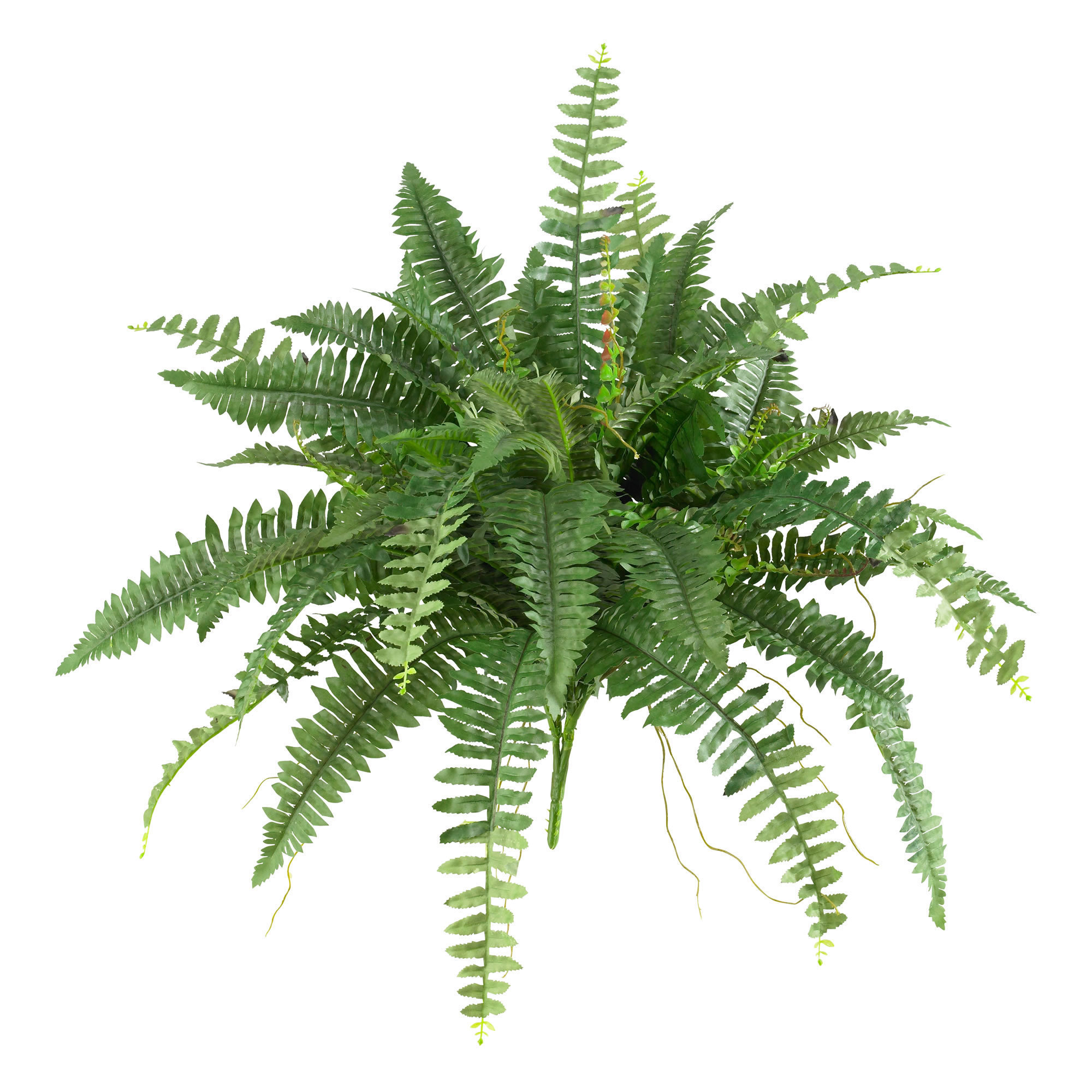 Shop Nearly Natural Silk 40 Inch Boston Fern Set Of 2 On Sale