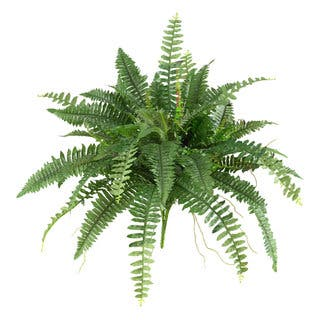 Artificial plants and flowers artificial plants for less overstock nearly natural silk 40 inch boston fern set of 2 mightylinksfo Choice Image