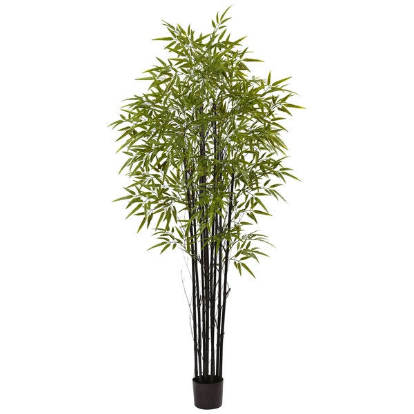 Nearly Natural Black 6-foot UV-resistant Bamboo Tree