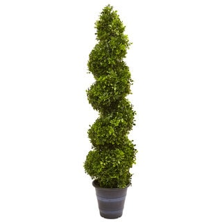 Boxwood Spiral Indoor/Outdoor Topiary with Planter