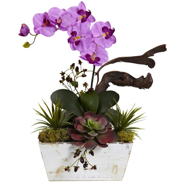 Mauve Orchid and Succulent Garden with White-wash Planter