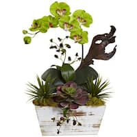 Nearly Natural Green Orchid and Succulent Garden with Whitewashed Planter