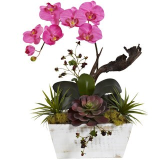 Nearly Natural Dark Pink Orchid and Succulent Garden with White Wash Planter