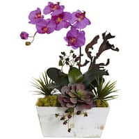 Nearly Natural Orchid & Succulent Garden with White Wash Planter (Orchid)