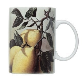 Limoni Lemon 16-ounce Mug (Set of 4)