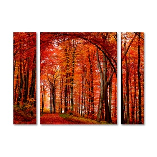 Philippe Sainte-Laudy 'The Red Way' Multi Panel Art Set