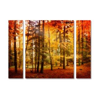 Philippe Sainte-Laudy 'Brilliant Fall Color' Multi Panel Art Set