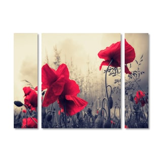 Philippe Sainte-Laudy 'Red For Love' Multi Panel Art Set