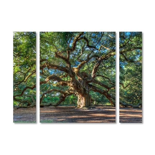 Pierre Leclerc 'Angel Oak Charleston' Multi Panel Art Set