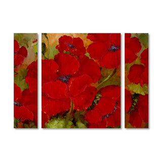 Rio 'Poppies' Multi Panel Art Set
