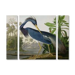John James Audubon 'Louisiana Heron' Multi Panel Art Set