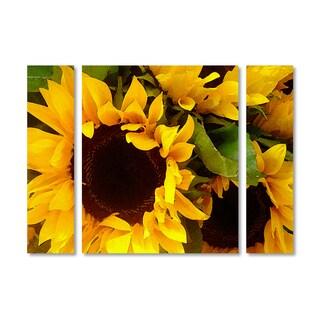 Amy Vangsgard 'Sunflowers' Multi Panel Art Set