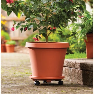 Bloem Terra Pot 10-inch Terra Cotta Planter