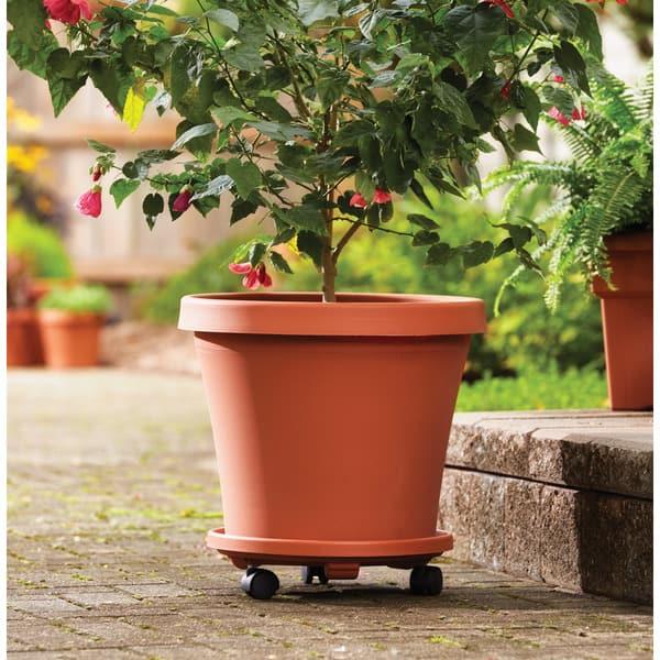 Bloem Terra Pot 20 Inch Cotta Planter Free