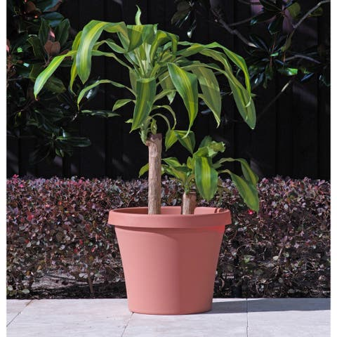 Bloem Terra Pot 24-inch Terra Cotta Planter