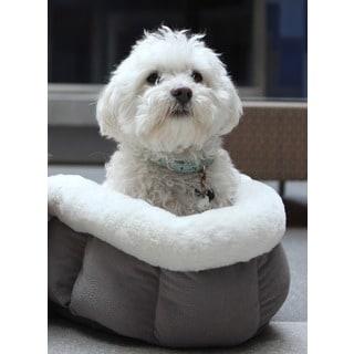 Best Friends by Sheri Cuddle Cup Ilan Dog Bed