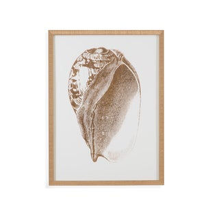 'Gold Foil Shell III' Wall Art