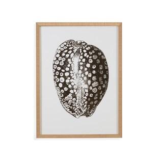 Bassett Mirror Co 'Gold Foil Shell II' Framed Wall Art - Black/White - 24 x 32
