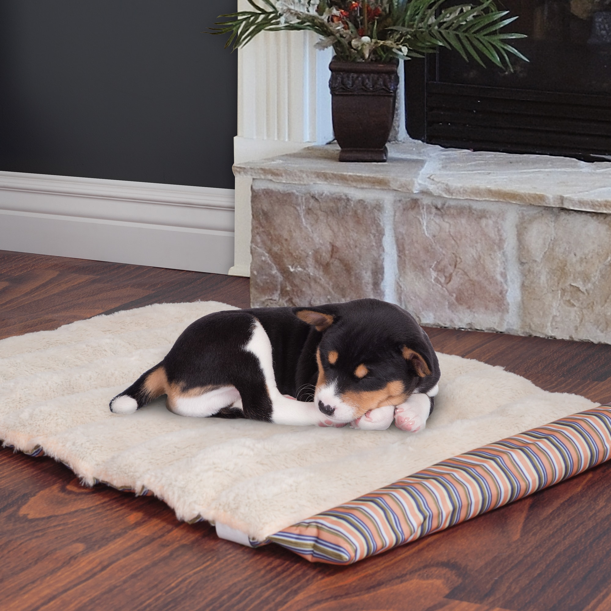 Petmaker Roll Up Travel Portable Dog Bed (Coral), Brown
