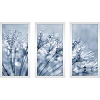 Dewy dandelion flower close up' Framed Plexiglass Wall Art (Set of 3)