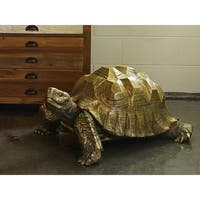 Aurelle Home Large Turtle Tortoise Sculpture